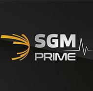 Материалы SGM Prime